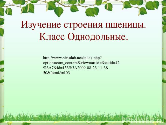 Изучение строения пшеницы. Класс Однодольные. http://www.virtulab.net/index.php?option=com_content&view=article&catid=42%3A7&id=153%3A2009-08-23-11-38-50&Itemid=103