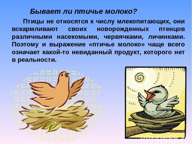 Птицы не относятся к числу млекопитающих, они вскармливают своих новорожденных птенцов различными насекомыми, червячками, личинками. Поэтому и выражение «птичье молоко» чаще всего означает какой-то невиданный продукт, которого нет в реальности. Быва…
