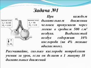 Задача №1 При каждом дыхательном движении человек пропускает через легкие в сред