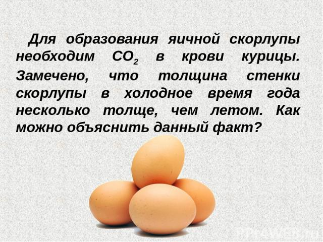 Для образования яичной скорлупы необходим СО2 в крови курицы. Замечено, что толщина стенки скорлупы в холодное время года несколько толще, чем летом. Как можно объяснить данный факт?