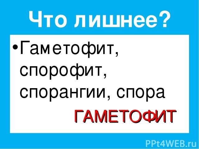 Что лишнее? Гаметофит, спорофит, спорангии, спора ГАМЕТОФИТ Владимар - null