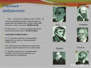 Ученные - эмбриологи Бэр – основатель эмбриологии в 1828 г. на основе фундамента