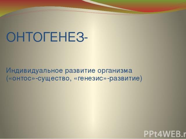 ОНТОГЕНЕЗ- Индивидуальное развитие организма («онтос»-существо, «генезис»-развитие)
