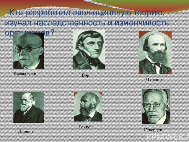 Кто разработал эволюционную теорию, изучал наследственность и изменчивость организмов? Шмальгаузен Мюллер Бэр Геккель Северцев Дарвин