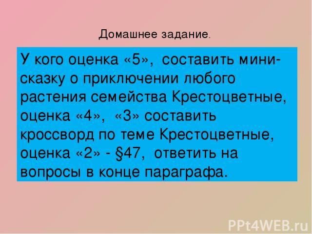Домашнее задание. У кого оценка «5», составить мини- сказку о приключении любого растения семейства Крестоцветные, оценка «4», «3» составить кроссворд по теме Крестоцветные, оценка «2» - §47, ответить на вопросы в конце параграфа.