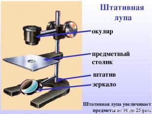 Штативная лупа штатив зеркало предметный столик окуляр Штативная лупа увеличивае