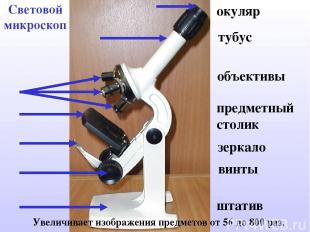 Световой микроскоп Увеличивает изображения предметов от 56 до 800 раз. окуляр ту