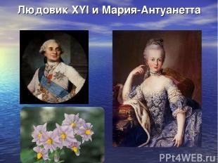 Людовик ХYI и Мария-Антуанетта