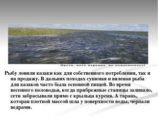 Рыбу ловили казаки как для собственного потребления, так и на продажу. В дальних