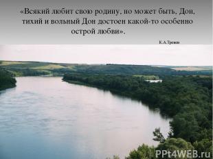 «Всякий любит свою родину, но может быть, Дон, тихий и вольный Дон достоен какой