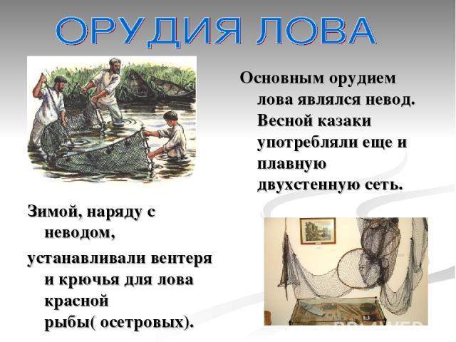 Основным орудием лова являлся невод. Весной казаки употребляли еще и плавную двухстенную сеть. Зимой, наряду с неводом, устанавливали вентеря и крючья для лова красной рыбы( осетровых).