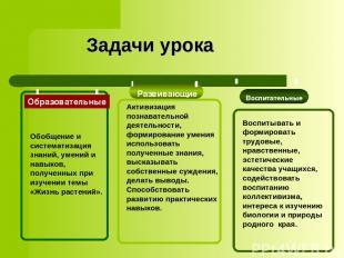 Задачи урока Развивающие Воспитательные Активизация познавательной деятельности,