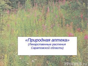 «Природная аптека» (Лекарственные растения Саратовской области)