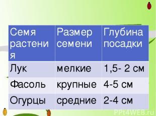Семярастения Размер семени Глубина посадки Лук мелкие 1,5- 2 см Фасоль крупные 4
