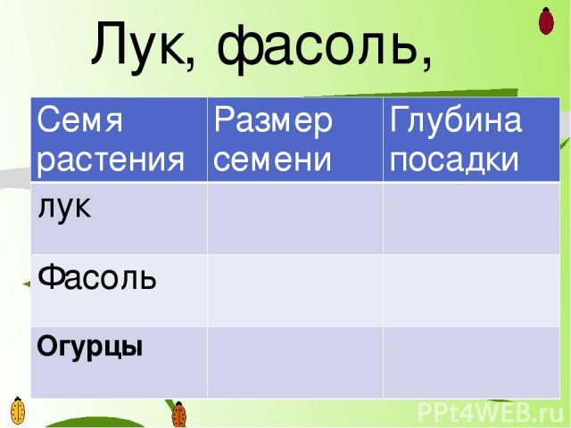 Лук, фасоль, огурцы Семя растения Размер семени Глубина посадки лук Фасоль Огурцы