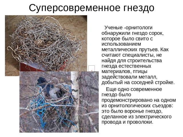 Суперсовременное гнездо Ученые -орнитологи обнаружили гнездо сорок, которое было свито с использованием металлических прутьев. Как считают специалисты, не найдя для строительства гнезда естественных материалов, птицы задействовали металл, добытый на…