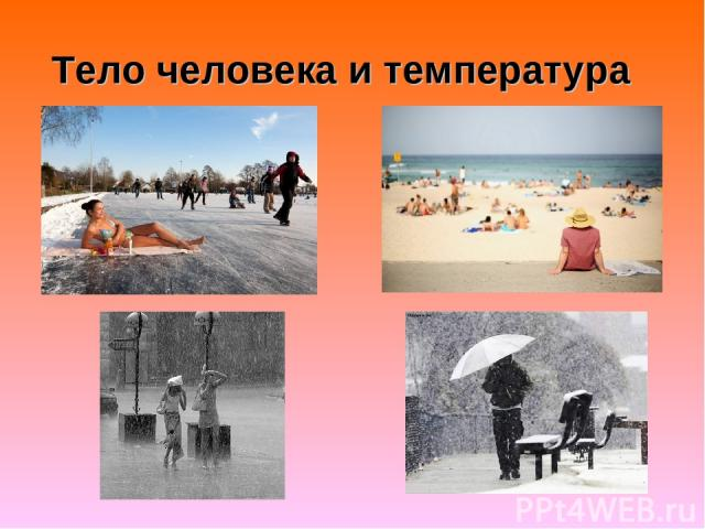 Тело человека и температура
