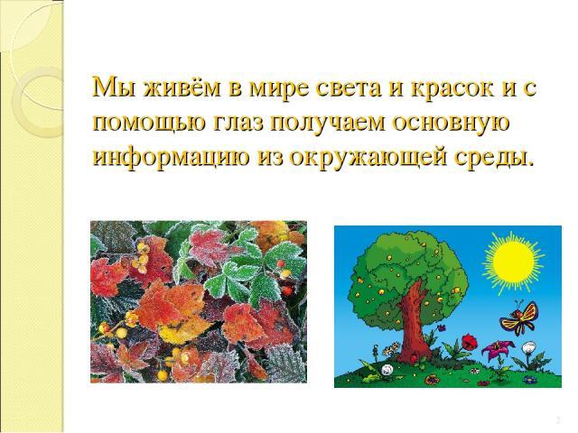 Мы живём в мире света и красок и с помощью глаз получаем основную информацию из окружающей среды. *