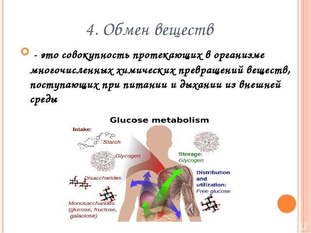 4. Обмен веществ - это совокупность протекающих в организме многочисленных химических превращений веществ, поступающих при питании и дыхании из внешней среды