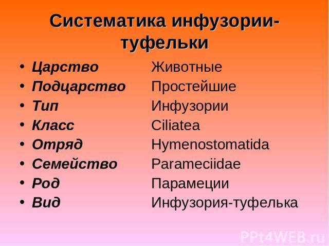 Систематика инфузории-туфельки Царство Животные Подцарство Простейшие Тип Инфузории Класс Ciliatea Отряд Hymenostomatida Семейство Parameciidae Род Парамеции Вид Инфузория-туфелька