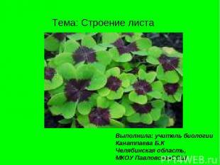 Тема: Строение листа Выполнила: учитель биологии Канатпаева Б.К Челябинская обла