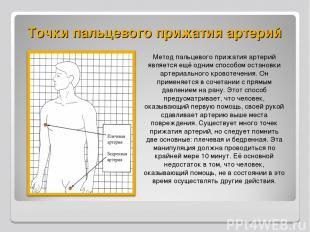 Точки пальцевого прижатия артерий Метод пальцевого прижатия артерий является ещё