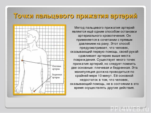 Точки пальцевого прижатия артерий Метод пальцевого прижатия артерий является ещё одним способом остановки артериального кровотечения. Он применяется в сочетании с прямым давлением на рану. Этот способ предусматривает, что человек, оказывающий первую…