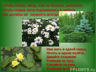 Чтобы сосны, липы, ели не болели, зеленели, Чтобы новые леса поднимались в небес