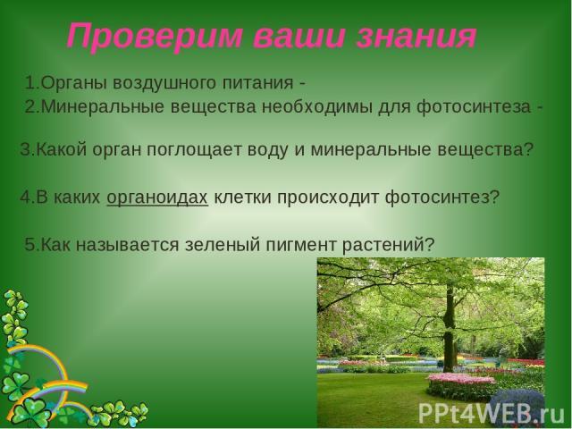 Проверим ваши знания 1.Органы воздушного питания - 2.Минеральные вещества необходимы для фотосинтеза - 3.Какой орган поглощает воду и минеральные вещества? 4.В каких органоидах клетки происходит фотосинтез? 5.Как называется зеленый пигмент растений?