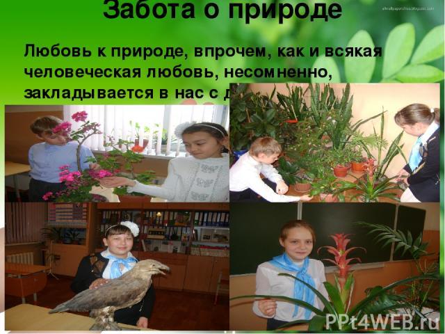 Забота о природе Любовь к природе, впрочем, как и всякая человеческая любовь, несомненно, закладывается в нас с детства.
