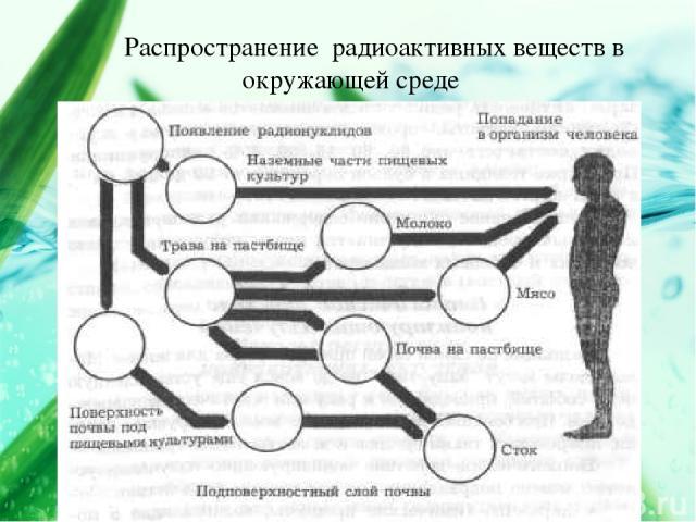 Распространение радиоактивных веществ в окружающей среде