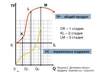 L TР С 0 Q1 Q2 Q3 K L M OK – 1 стадия KL – 2 стадия LM – 3 стадия TP – общий про