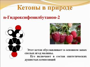 n-Гидроксифенилбутанон-2 Этот кетон обуславливает в основном запах спелых ягод м