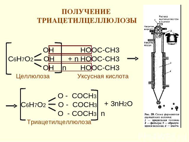 ПОЛУЧЕНИЕ ТРИАЦЕТИЛЦЕЛЛЮЛОЗЫ * ОН С6Н7О2 ОН ОН n НООС-СН3 + n НООС-СН3 НООС-СН3 О - CОСН3 С6Н7О2 О - СОСН3 О - СОСН3 n + 3nН2О Целлюлоза Триацетилцеллюлоза Уксусная кислота