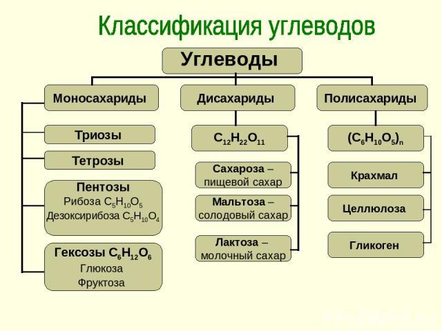 Триозы Тетрозы Пентозы Рибоза С5Н10О5 Дезоксирибоза С5Н10О4 Гексозы С6Н12О6 Глюкоза Фруктоза С12Н22О11 Сахароза – пищевой сахар Мальтоза – солодовый сахар Лактоза – молочный сахар Гликоген Целлюлоза Крахмал (С6Н10О5)n Углеводы Моносахариды Полисахар…