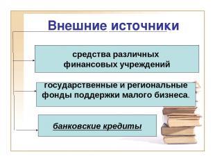 Внешние источники банковские кредиты государственные и региональные фонды поддер