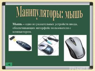 Мышь – одно из указательных устройств ввода, обеспечивающих интерфейс пользовате
