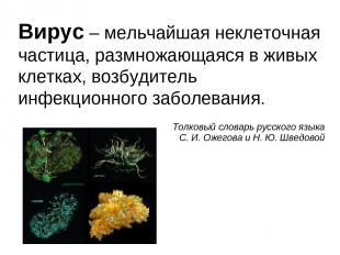 Вирус – мельчайшая неклеточная частица, размножающаяся в живых клетках, возбудит