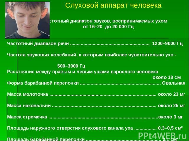 Слуховой аппарат человека Частотный диапазон звуков, воспринимаемых ухом от 16–20 до 20 000 Гц Частотный диапазон речи ............................................................ 1200–9000 Гц Частота звуковых колебаний, к которым наиболее чувствите…