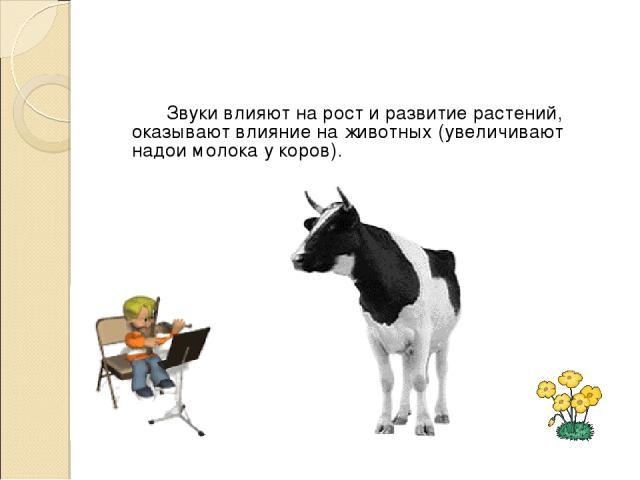 Звуки влияют на рост и развитие растений, оказывают влияние на животных (увеличивают надои молока у коров).