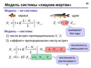 * Модель системы «хищник-жертва» Модель – не-система: Модель – система: число вс