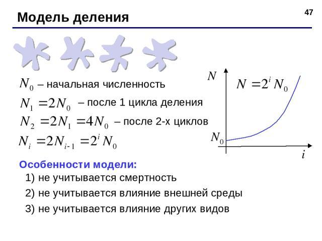 * – начальная численность – после 1 цикла деления – после 2-х циклов Особенности модели: не учитывается смертность не учитывается влияние внешней среды не учитывается влияние других видов Модель деления