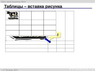Таблицы – вставка рисунка ЛКМ Текстовый процессор Word К. Поляков, 2012 http://k