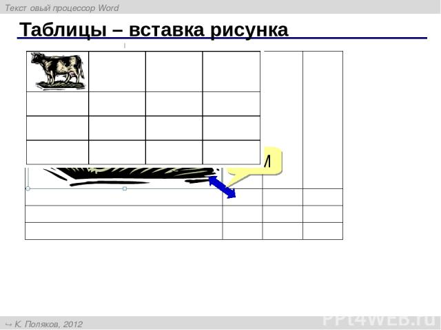 Таблицы – вставка рисунка ЛКМ Текстовый процессор Word К. Поляков, 2012 http://kpolyakov.narod.ru