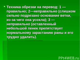Техника обрезки на перевод: 1 — правильно; 2—неправильно (слишком сильно подреза