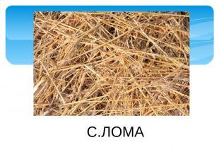 С.ЛОМА