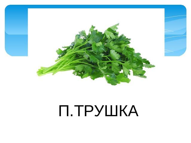 П.ТРУШКА