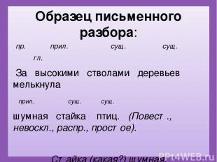 Образец письменного разбора: пр. прил. сущ. сущ.