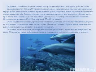 Дельфины - семейство млекопитающих из отряда китообразных, подотряда зубатых кит