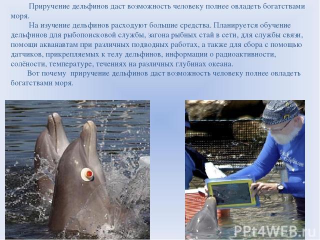 Приручение дельфинов даст возможность человеку полнее овладеть богатствами моря. На изучение дельфинов расходуют большие средства. Планируется обучение дельфинов для рыбопоисковой службы, загона рыбных стай в сети, для службы связи, помощи акванавта…